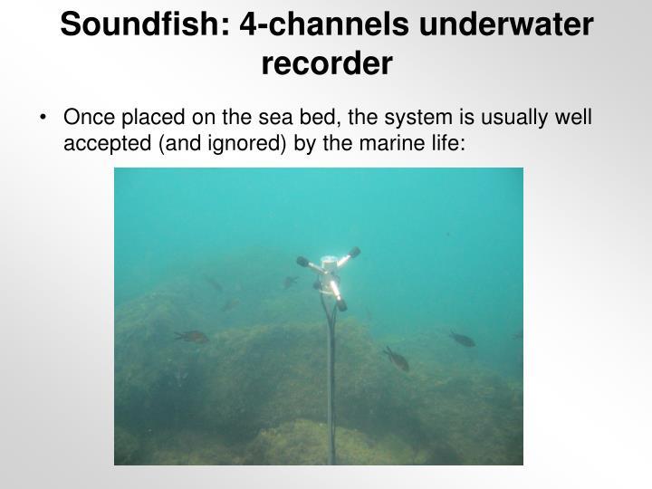 Soundfish: 4-channels underwater recorder