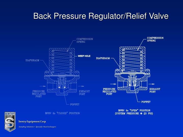 Back Pressure Regulator/Relief Valve