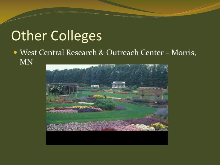 Other Colleges