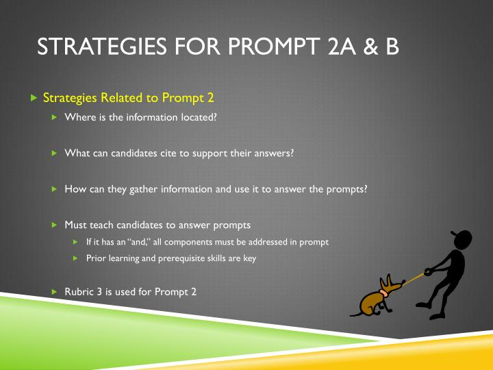 Strategies for Prompt 2a & b