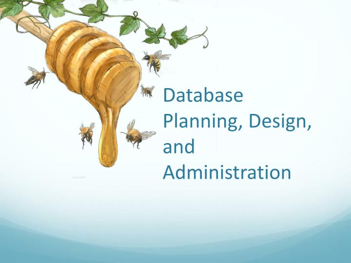 Database planning design and administration