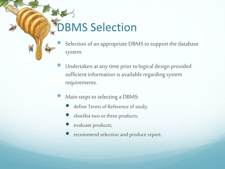 DBMS Selection