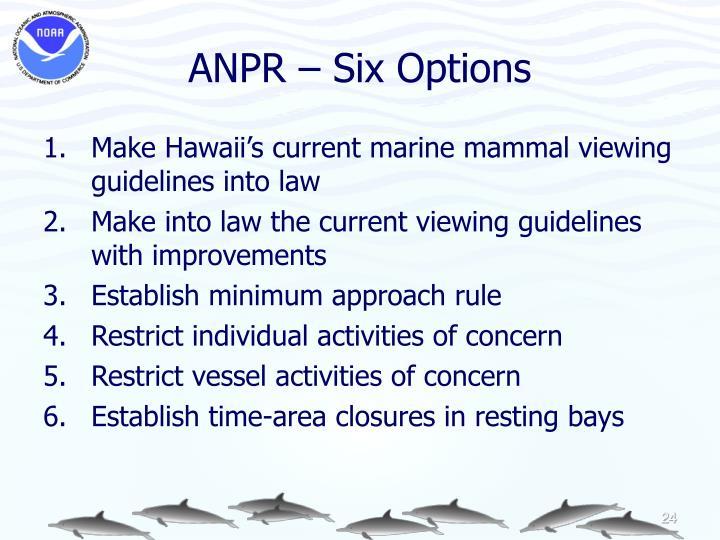 ANPR – Six Options