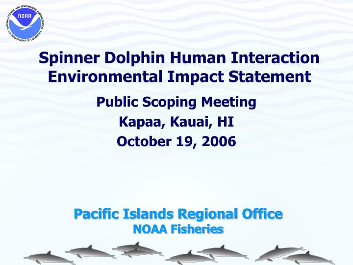 Spinner dolphin human interaction environmental impact statement1