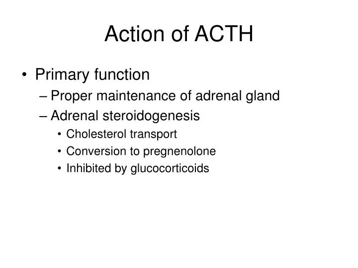 Action of ACTH