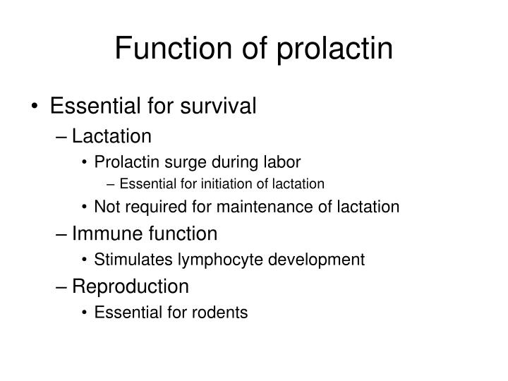 Function of prolactin