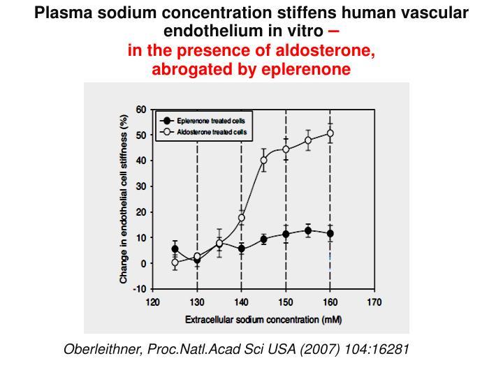 Plasma sodium concentration stiffens human vascular endothelium in vitro