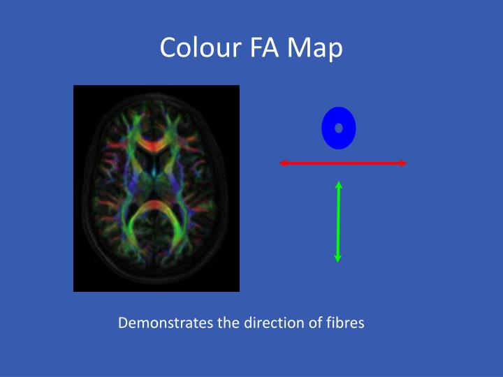 Colour FA Map