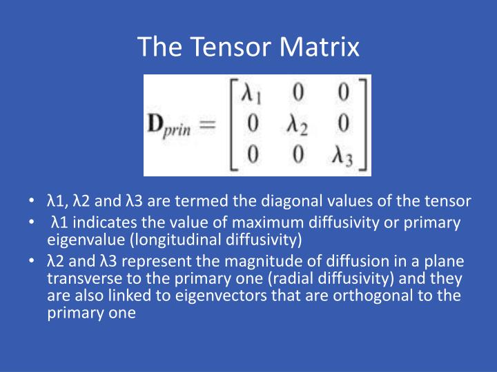 The Tensor Matrix