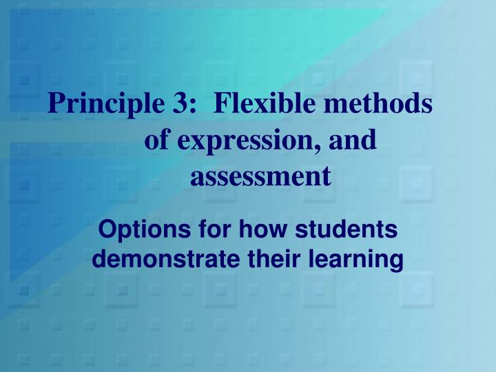 Principle 3:  Flexible methods of expression, and assessment