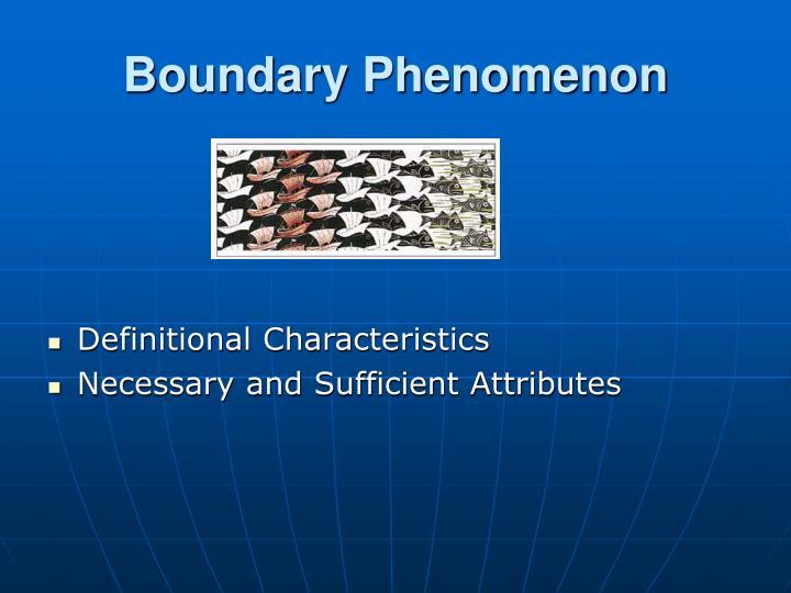 Boundary Phenomenon