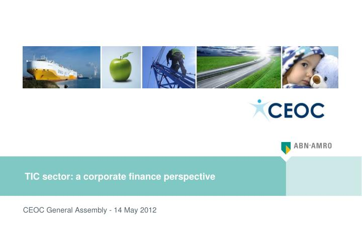 tic sector a corporate finance perspective