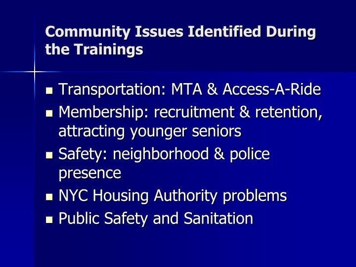 Community Issues Identified During   the Trainings