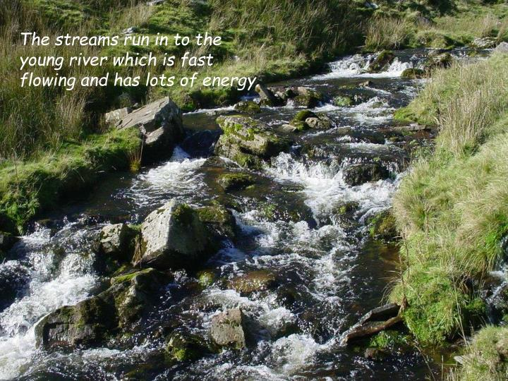 The streams run in to the young river which is fast flowing and has lots of energy.