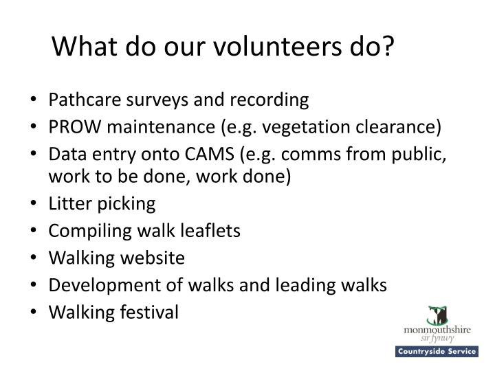 What do our volunteers do?