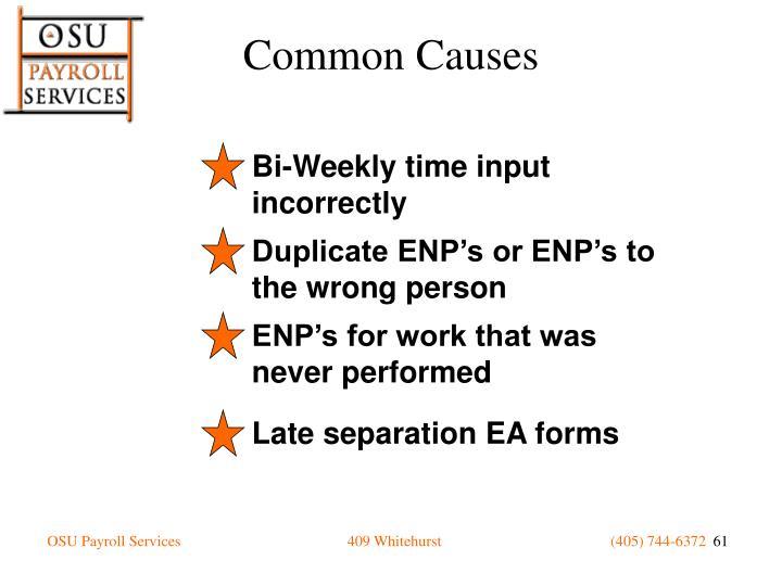 Bi-Weekly time input incorrectly