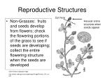 reproductive structures1