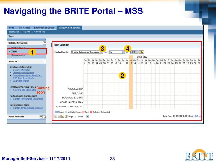 Navigating the BRITE Portal – MSS