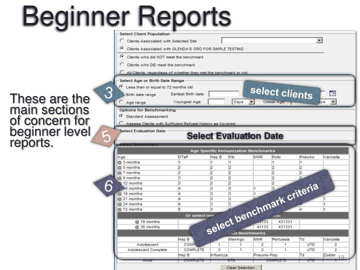 These are the main sections of concern for beginner level reports.