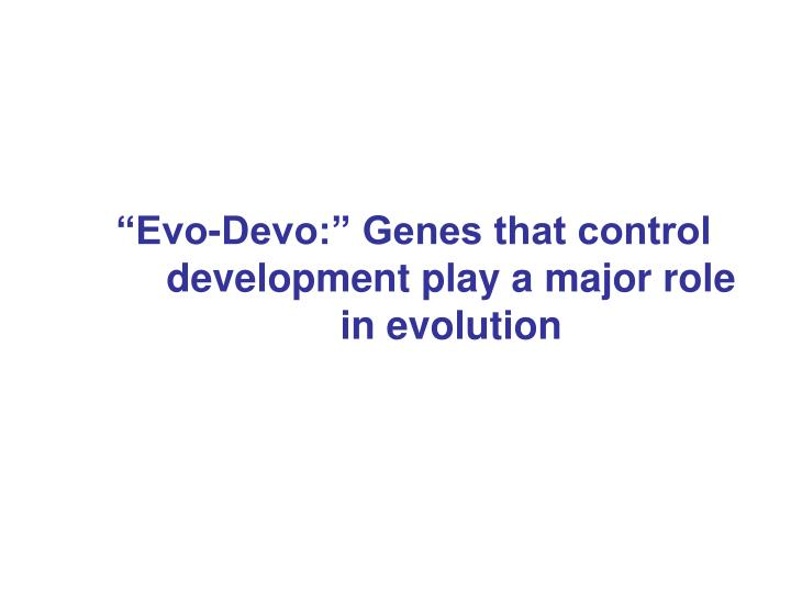 """Evo-Devo:"" Genes that control development play a major role in evolution"