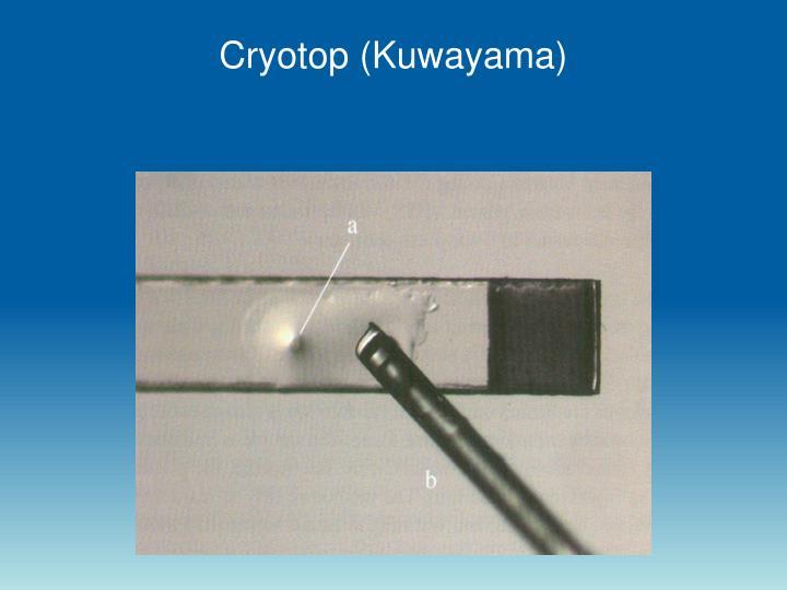 Cryotop (Kuwayama)