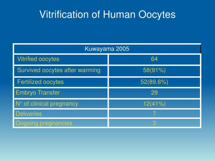 Vitrification of Human Oocytes