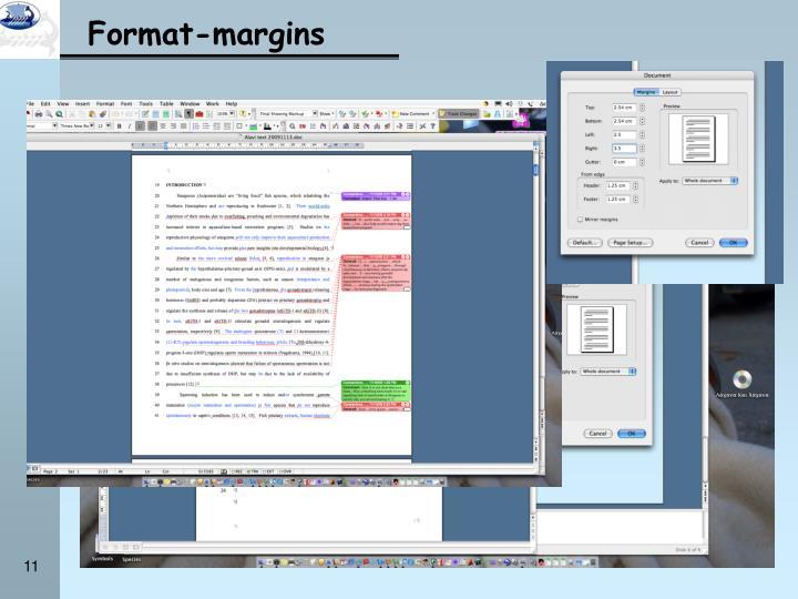 Format-margins
