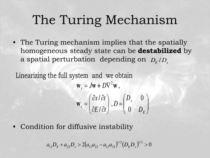 The Turing Mechanism