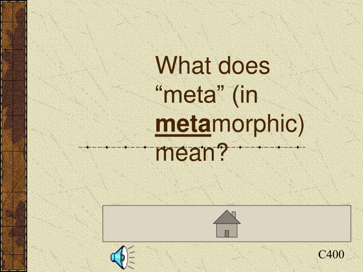 "What does ""meta"" (in"