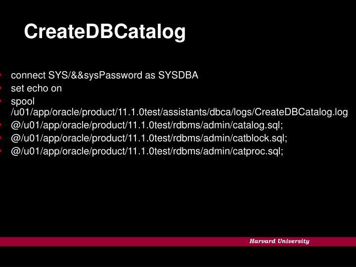 CreateDBCatalog