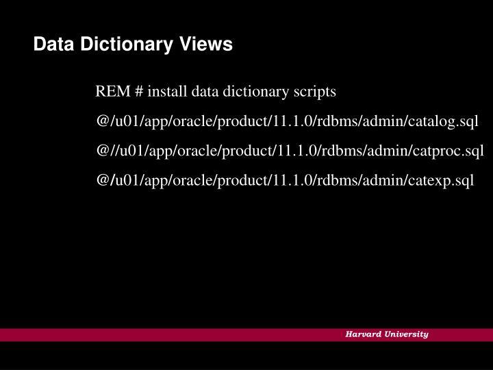 Data Dictionary Views
