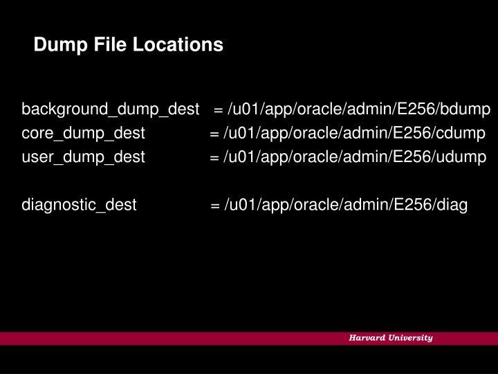 Dump File Locations