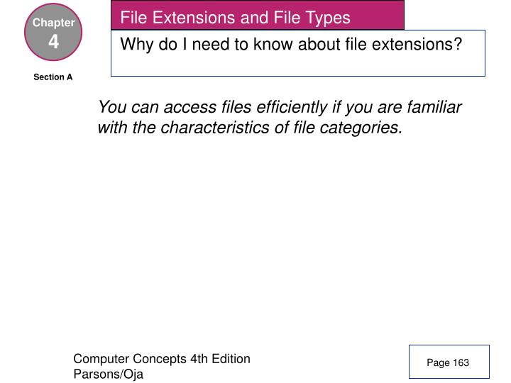 File Extensions and File Types