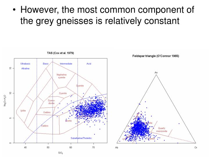 However, the most common component of the grey gneisses is relatively constant