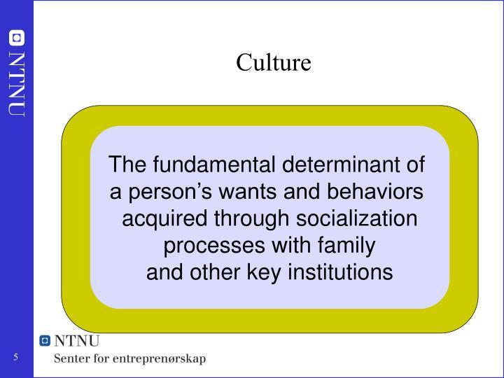 The fundamental determinant of