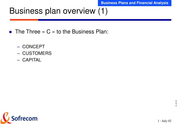 Business plan overview 1