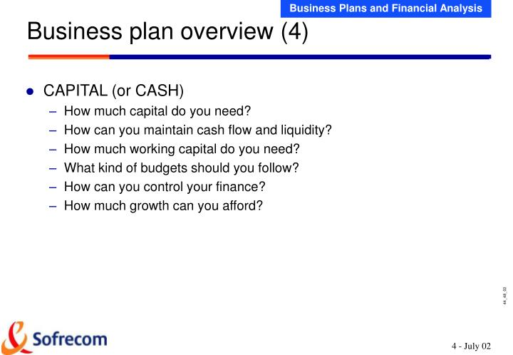Business plan overview (4)