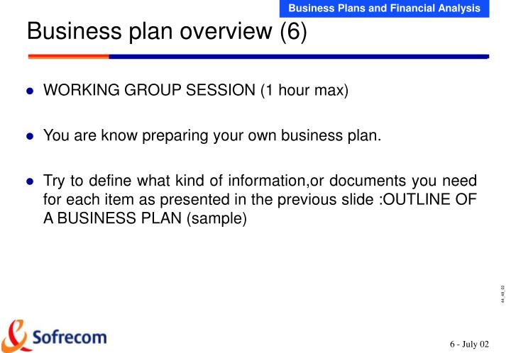 Business plan overview (6)