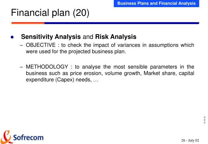 Financial plan (20)