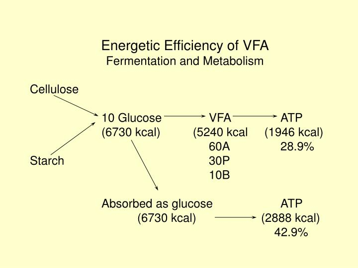 Energetic Efficiency of VFA