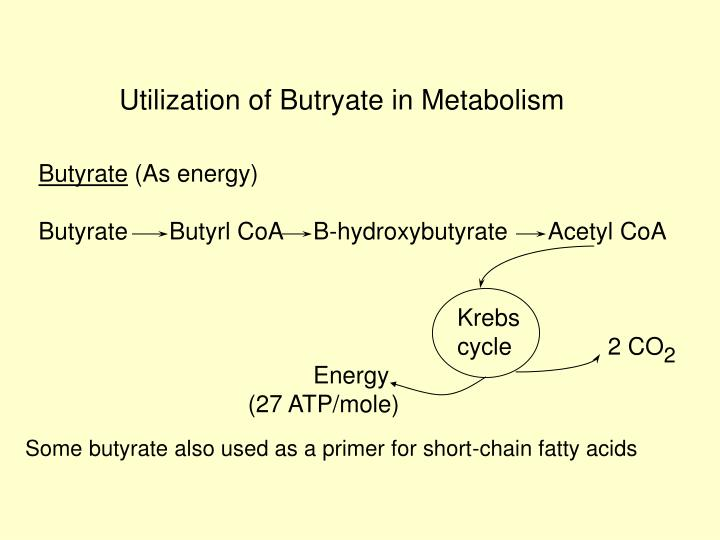 Utilization of Butryate in Metabolism