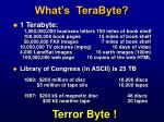 what s terabyte