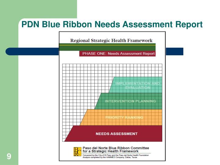 PDN Blue Ribbon Needs Assessment Report