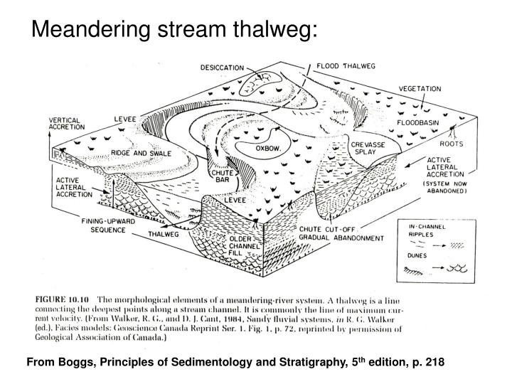 Meandering stream thalweg: