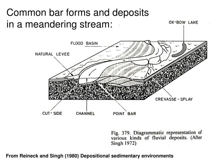 Common bar forms and deposits in a meandering stream: