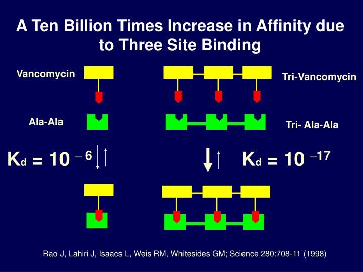 A Ten Billion Times Increase in Affinity due to Three Site Binding