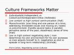 culture frameworks matter