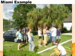 miami example