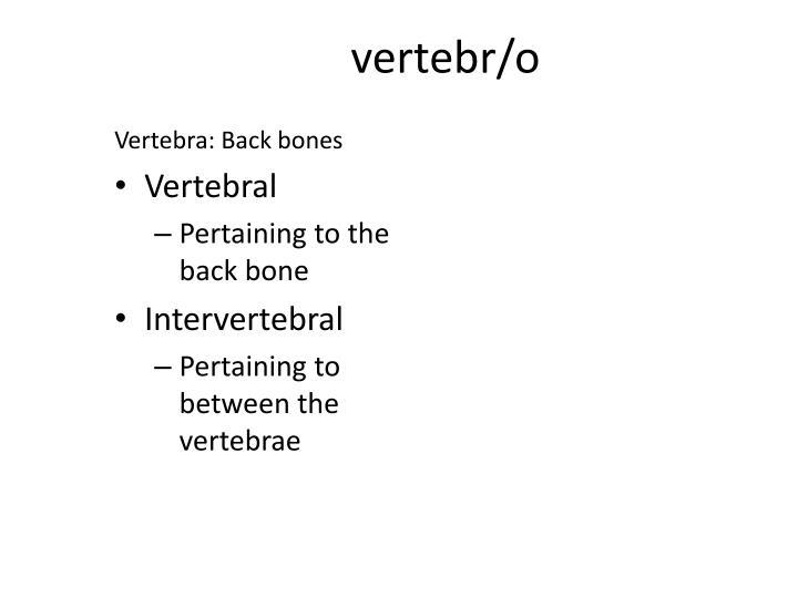 vertebr/o