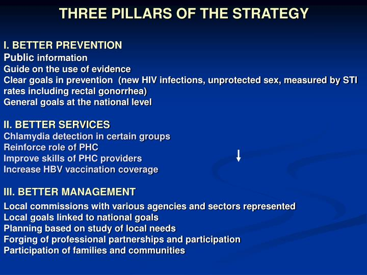 THREE PILLARS OF THE STRATEGY